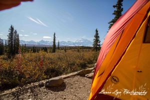 Denali Tent August 2014 1 Watermark