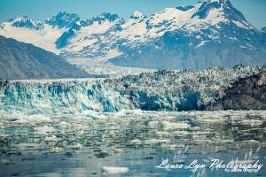 Valdez Ocean 2 2 Watermark