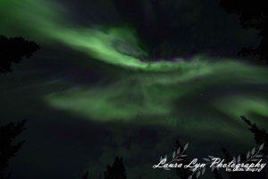 Aurora Borealis Denali National ParkSeptember 7 2015 Watermark