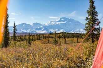 denali-view-denali-national-park-9-2014-5-blog